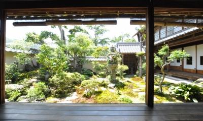 建築士の家 (坪庭(東から))