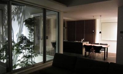 LIGHT COURT HOUSE (リビング)