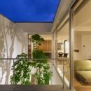 LIGHT COURT HOUSEの写真 中庭