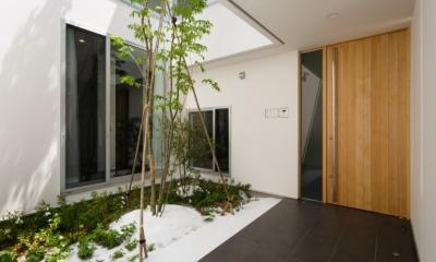 LIGHT COURT HOUSE (中庭)