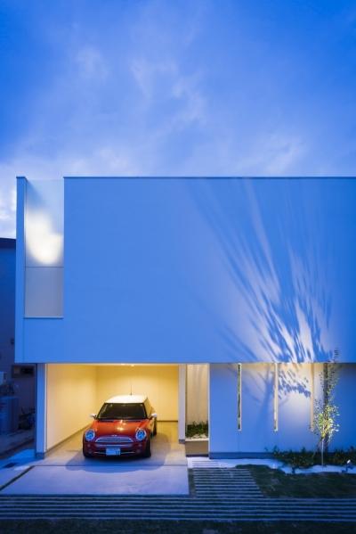 LIGHT COURT HOUSE (夜景)