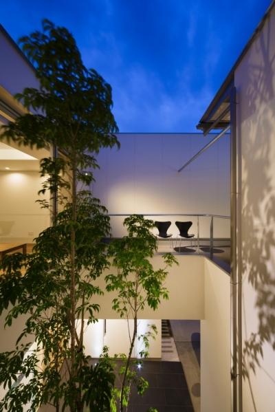 中庭 (LIGHT COURT HOUSE)