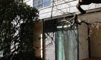 金沢文庫の家 (外観)