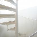 光の中の螺旋階段