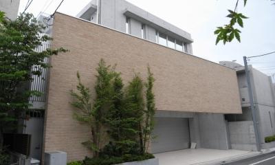 世田谷の家 (外観)