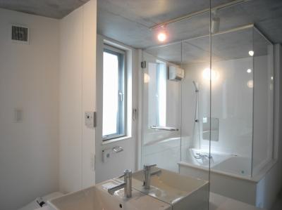 洗面浴室 (三田H邸)