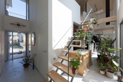 玄関と裏庭を繋ぐ土間空間 (アジアンマーケットハウス)