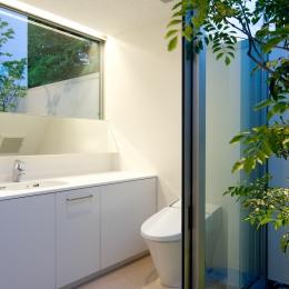 深沢の家 (洗面・トイレ)