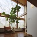 市川の家〜森に臨むコートハウス〜の写真 リビング