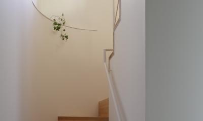 サイ邸 (階段室)