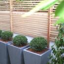 山越 健造の住宅事例「courtyardN」