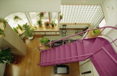 都心地の鉄骨3階建て戸建住宅-N (玄関)