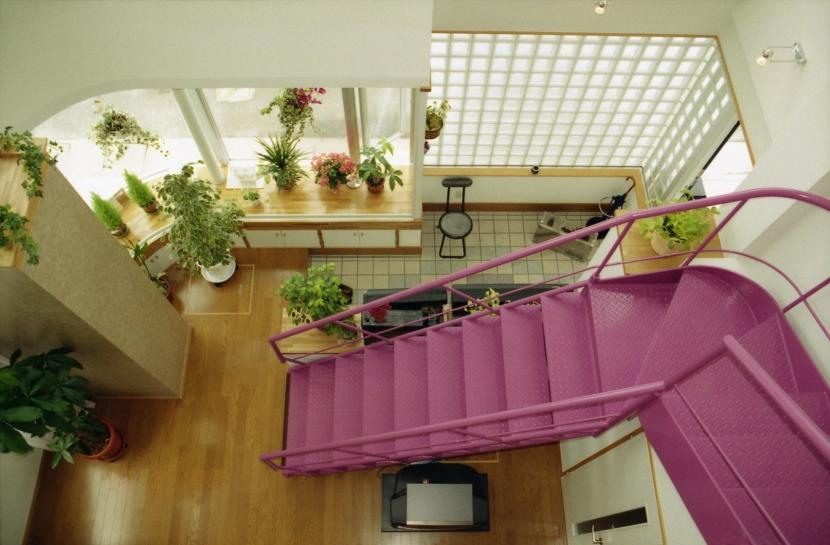 建築家:新田広史「都心地の鉄骨3階建て戸建住宅-N」