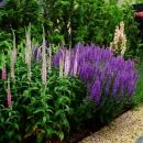 gardenM