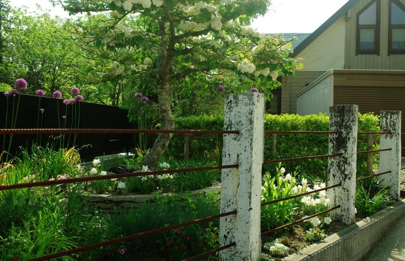 gardenNの部屋 gardenN8