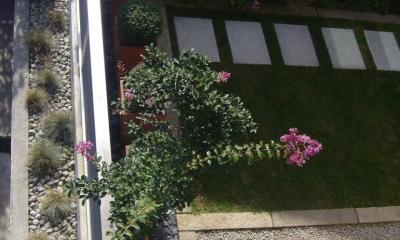 gardenS (gardenS8)