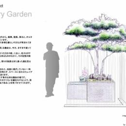 Transitory Garden (Transitory Garden1)