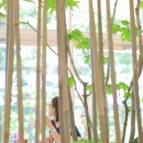Transitory Garden
