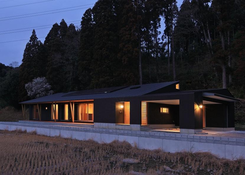 癒しの森の中の平屋住宅の写真 外観