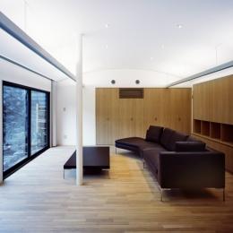 湯島Sハウス (リビングR天井と間接照明)