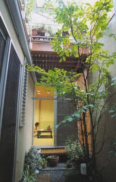 重要な役割を持つ小さな中庭 (埼玉県羽生市・30坪の敷地に建つ6人家族の家 かなちゃんち)