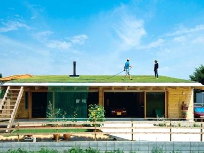 緑化屋根で快適に暮らす (土間リビングで愛車と暮らす家|BEAT HOUSE)