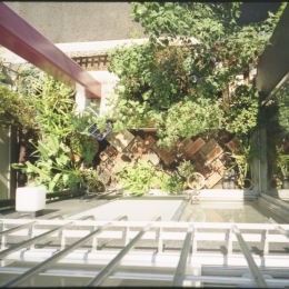 都心地の鉄骨3階建て戸建住宅-N (坪庭)
