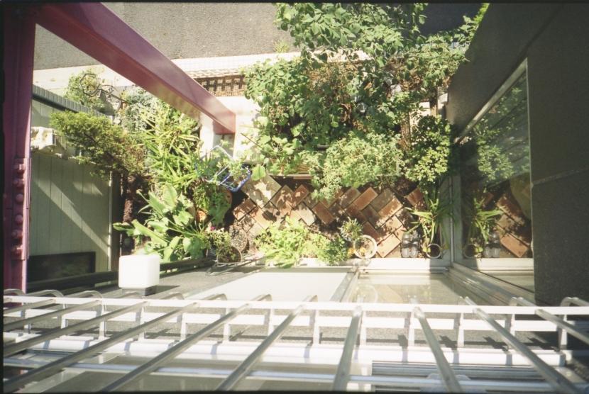 都心地の鉄骨3階建て戸建住宅-Nの写真 坪庭