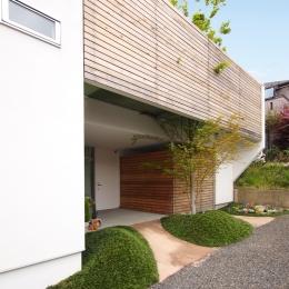 ふたつの木の家 〜常に家族を見守る2つのシンボルツリー〜-南側アプローチから見た外観