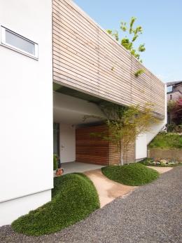 ふたつの木の家 (南側アプローチから見た外観)