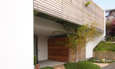 ふたつの木の家 〜常に家族を見守る2つのシンボルツリー〜
