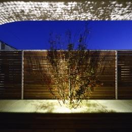 """ふたつの木の家 (夜の""""空庭"""")"""