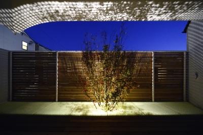 """夜の""""空庭"""" (ふたつの木の家)"""