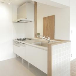 平塚の家 (キッチン)