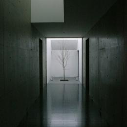 HOUSE KS 2 (廊下)