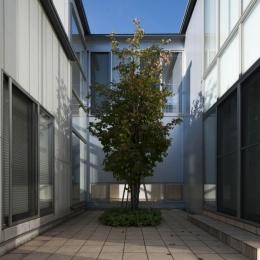 久安の家|プライベートな外部空間を持つ家 (中庭)