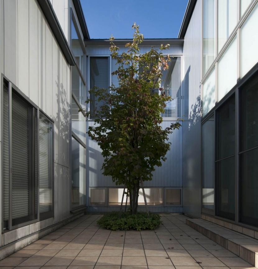 久安の家|プライベートな外部空間を持つ家の写真 中庭