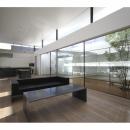 SI-house_薄い屋根と水盤と一体になる家