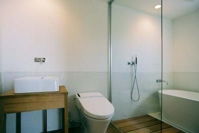 開放的なバス・トイレ (大桑のゲストハウス 混構造の小さなゲストハウス)