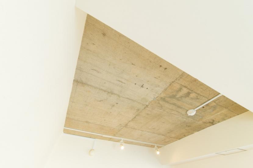 自然素材に囲まれたワンちゃんとの暮らし『Organic Styleリノベーション』の写真 天井