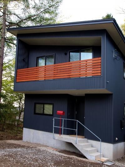 ガルバリウム鋼板の外観2 (軽井沢の別荘)