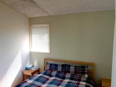 ベッドヘッドを淡いグリーンに仕上げたベッドルーム (軽井沢の別荘)