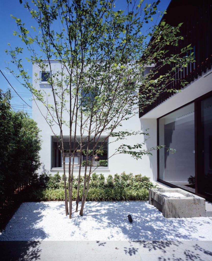 メインツリーと雨受けがある大谷石の中庭 (スキマのある家)