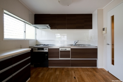 Mr-House (kitchen)