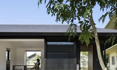 下北方の家/宮崎市の住宅 (南面外観)