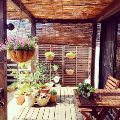 Y-O house (ルーフバルコニー)