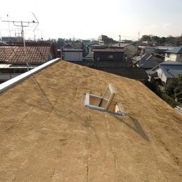 傾斜屋根の屋上緑化 (草屋根全景)