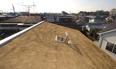 傾斜屋根の屋上緑化