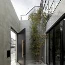 LEVEL Architectsの住宅事例「渋谷の住宅」