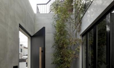 渋谷の住宅 (アプローチ)